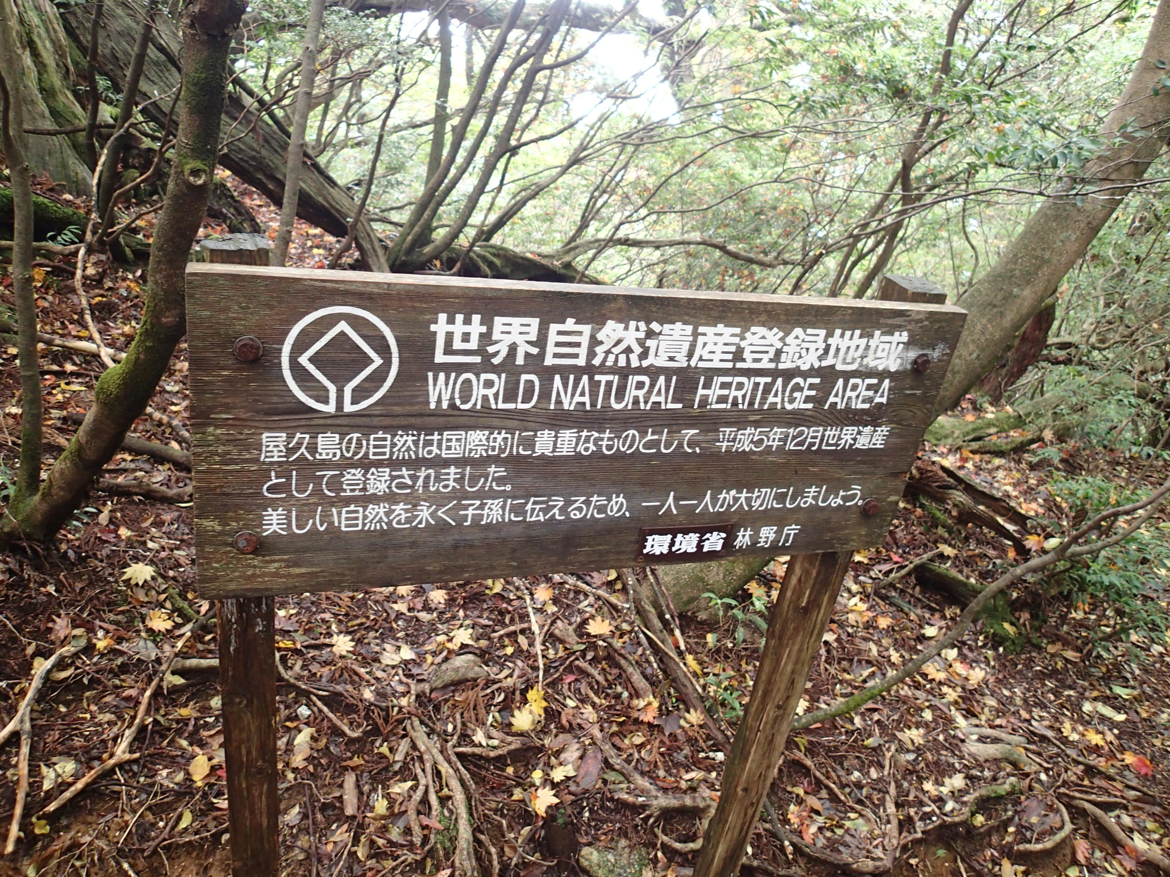 屋久島世界遺産入り口
